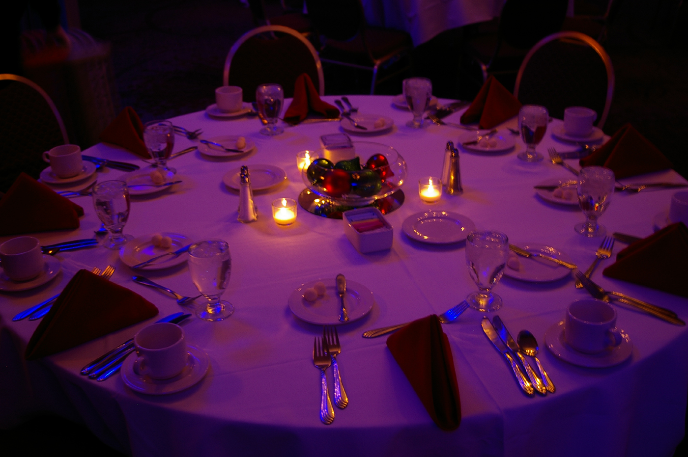 Holiday Party | Rochester DJ | RIT Inn & Conference Center